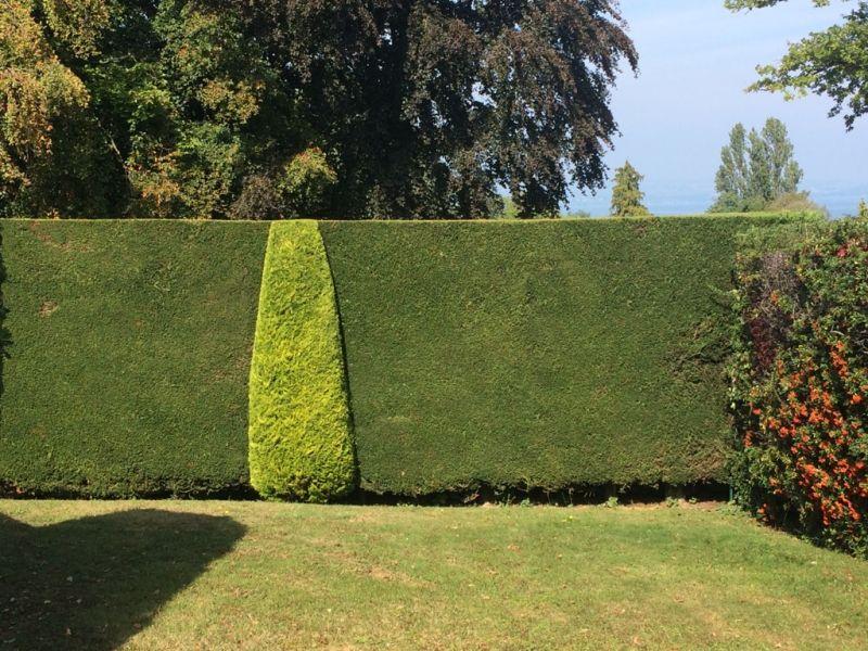 Entretien de jardin thonon for Entretien jardin 22